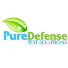Pure Defense Pest Solutions