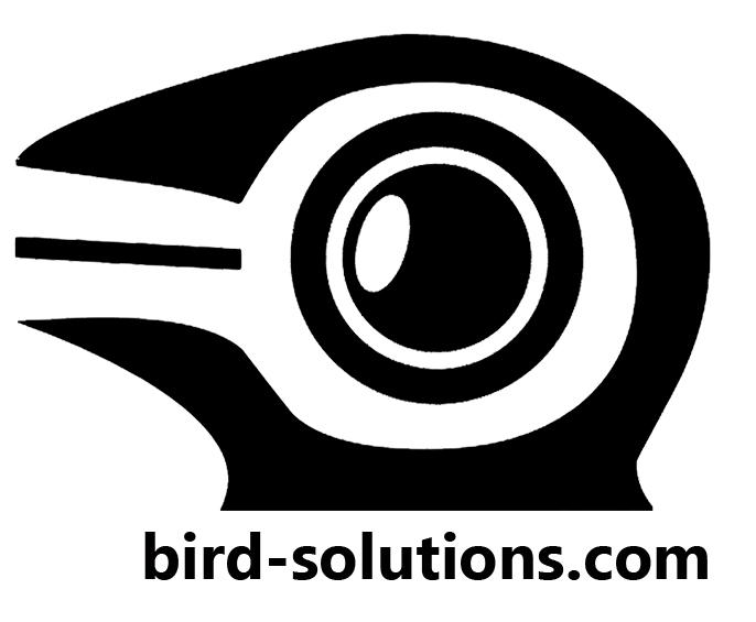 Bird Real Estate Photography & Drone Services