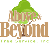 Above and Beyond Tree Service - Platinum